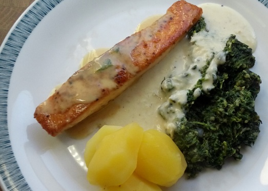 lachs_spinat_11